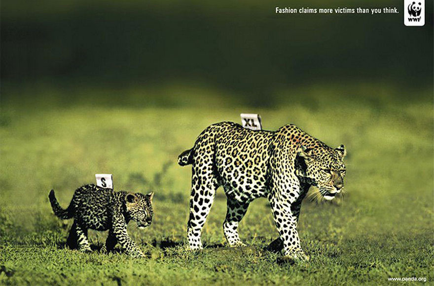 public-social-ads-animals-127